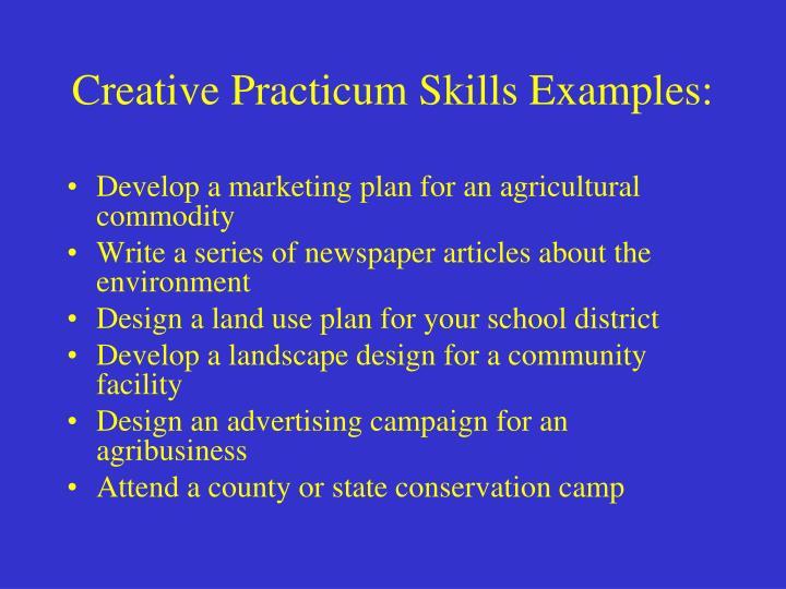 Creative Practicum Skills Examples: