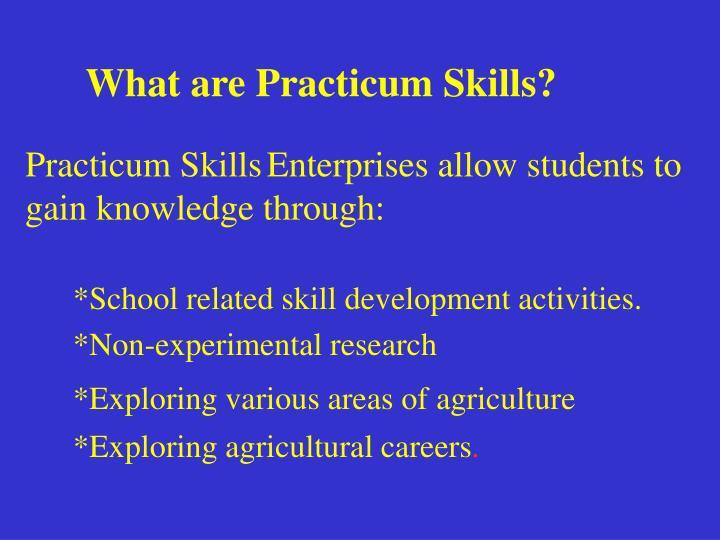 What are Practicum Skills?