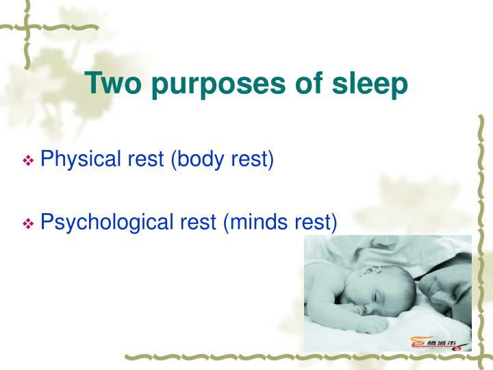 Two purposes of sleep