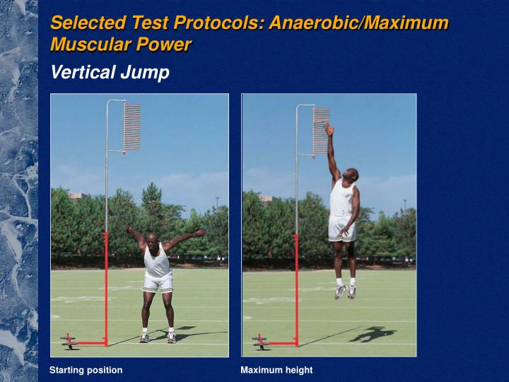 Selected Test Protocols: Anaerobic/Maximum Muscular Power