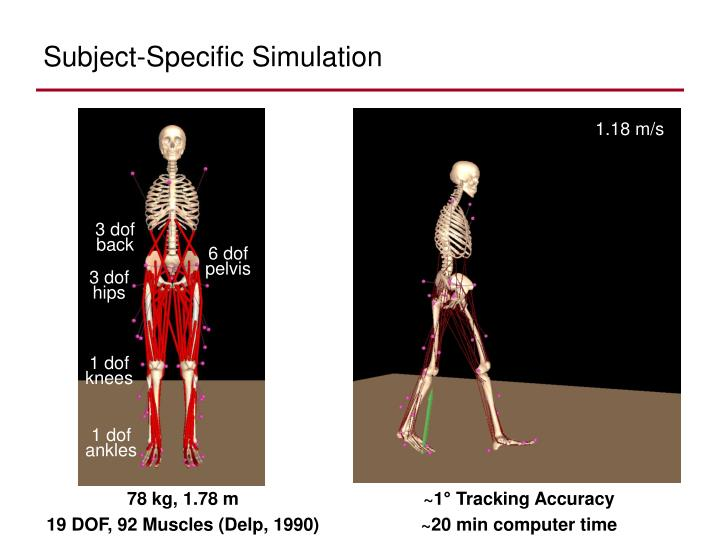 Subject-Specific Simulation