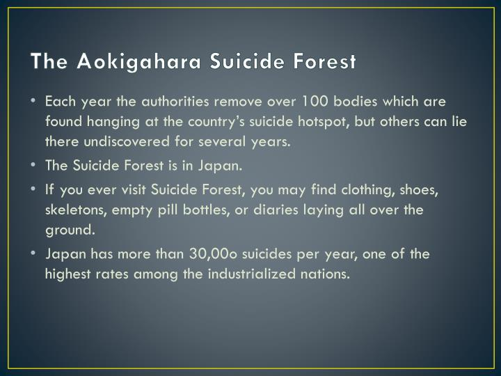 The Aokigahara Suicide Forest