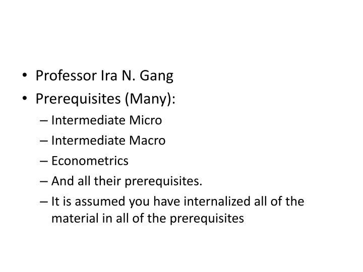 Professor Ira N. Gang