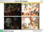 input ldr images