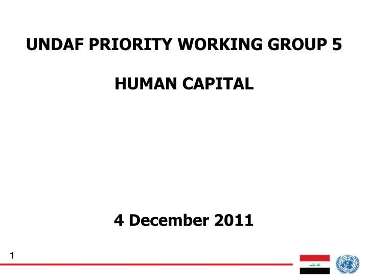 Undaf priority working group 5 human capital