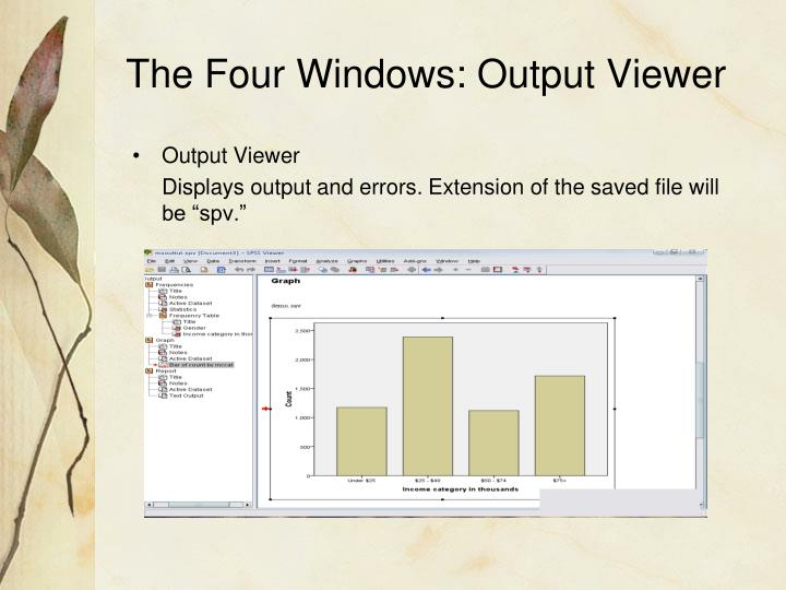 The Four Windows: Output Viewer