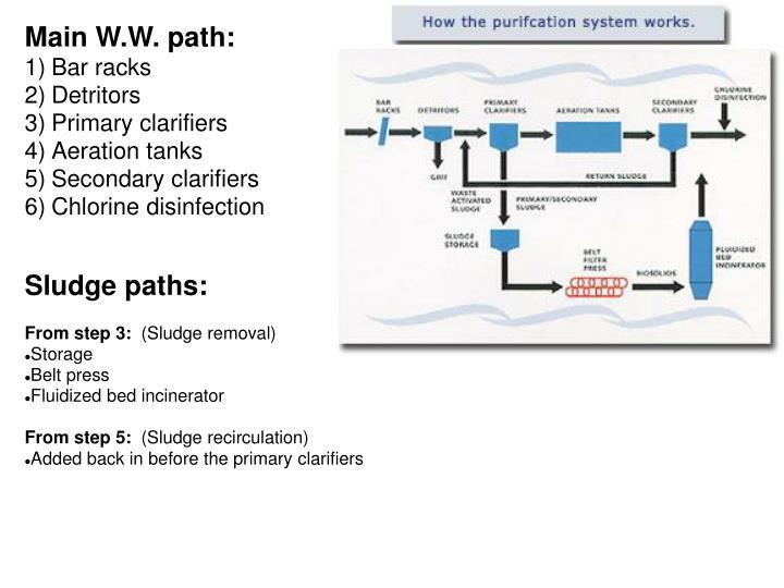 Main W.W. path: