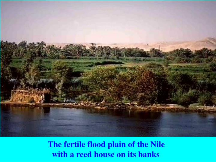 The fertile flood plain of the Nile