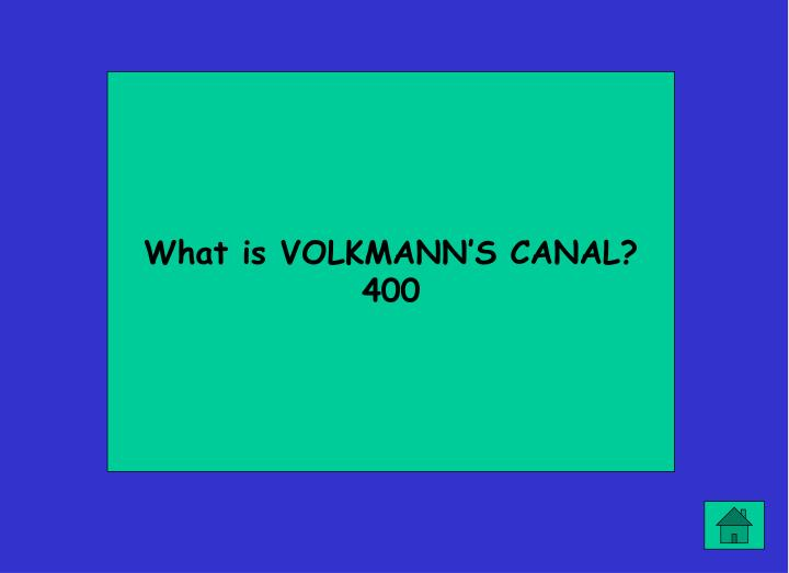 What is VOLKMANN'S CANAL?