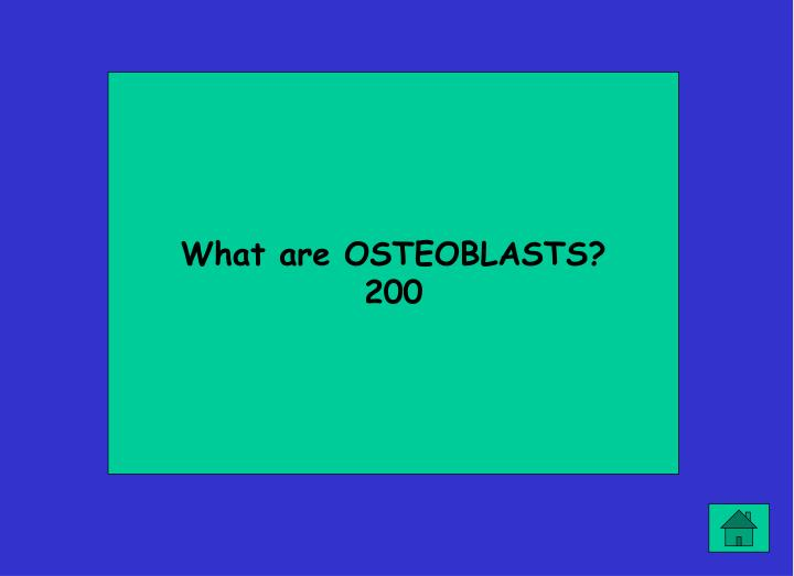 What are OSTEOBLASTS?