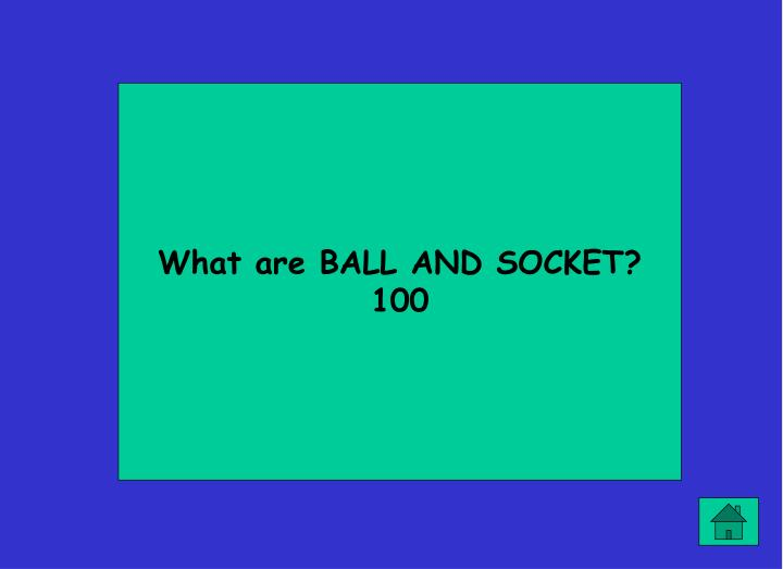 What are BALL AND SOCKET?