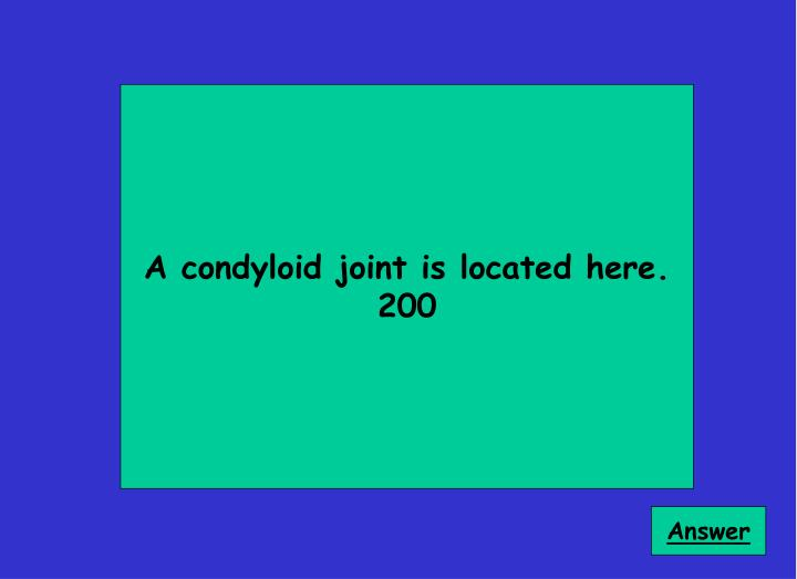 A condyloid joint is located here.
