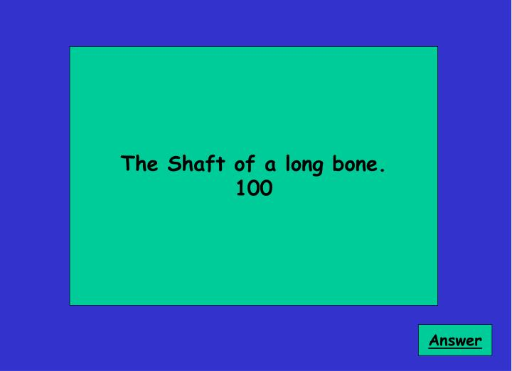 The Shaft of a long bone.