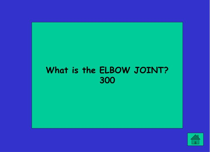 What is the ELBOW JOINT?