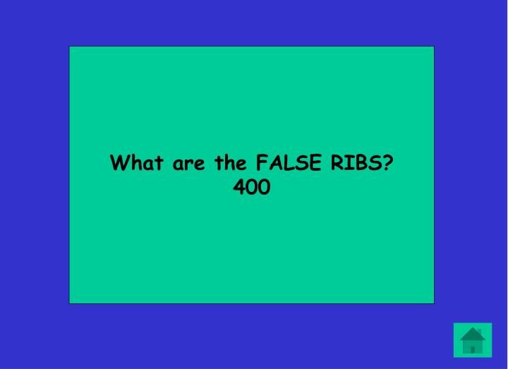 What are the FALSE RIBS?