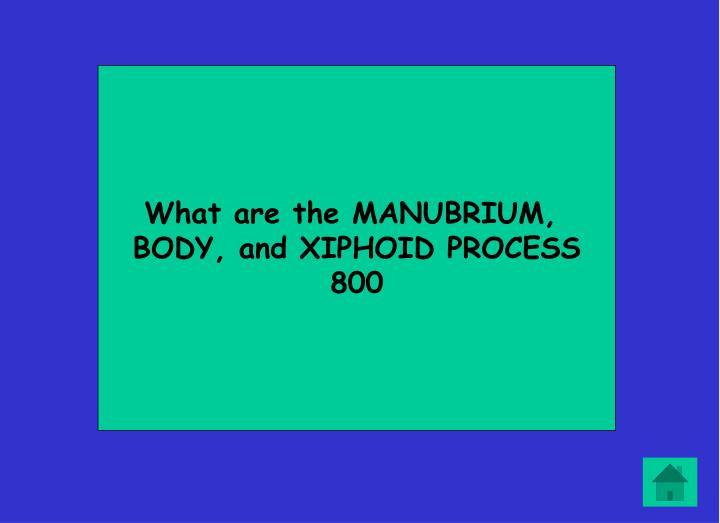 What are the MANUBRIUM,