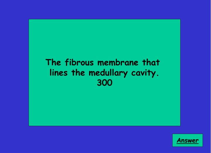 The fibrous membrane that