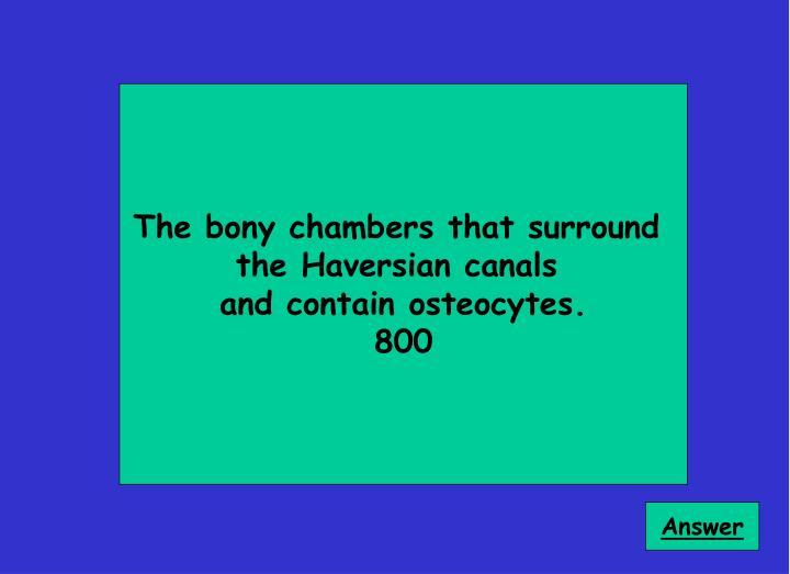 The bony chambers that surround