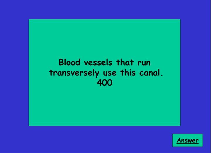 Blood vessels that run
