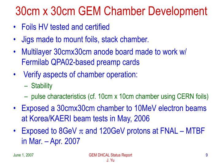 30cm x 30cm GEM Chamber Development