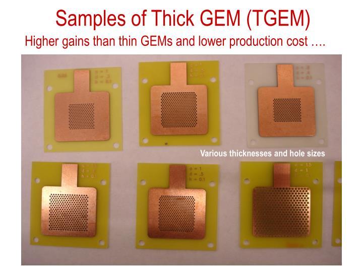 Samples of Thick GEM (TGEM)