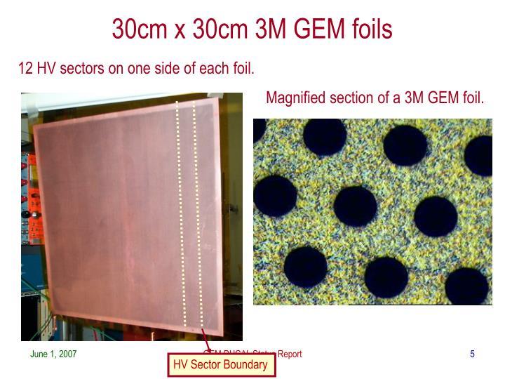 30cm x 30cm 3M GEM foils