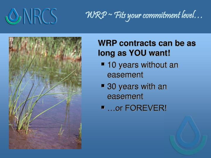 WRP ~ Fits your commitment level…