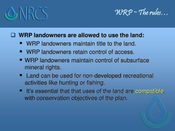WRP ~ The rules…
