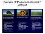 examples of profitable sustainability wal mart