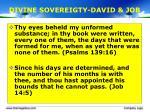divine sovereigty david job