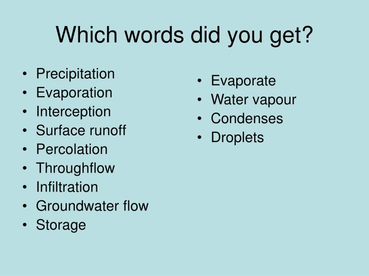 Which words did you get?