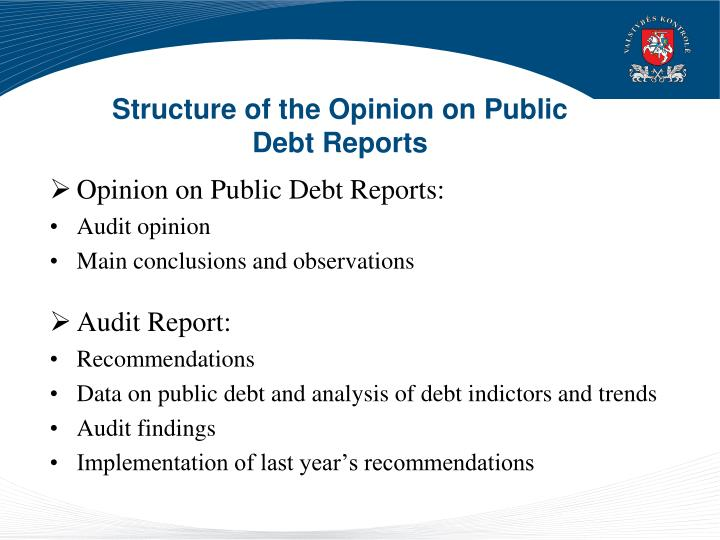 Structure of the Opinion on Public Debt Reports