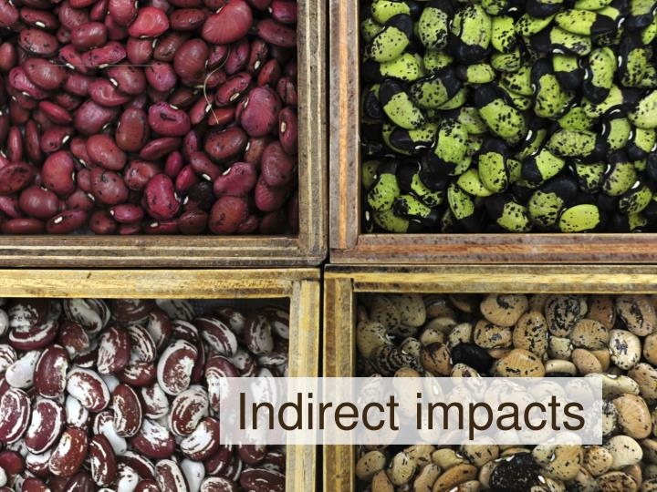 Indirect impacts