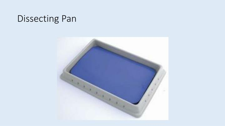 Dissecting Pan