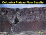 columbia plateau flow basalts1