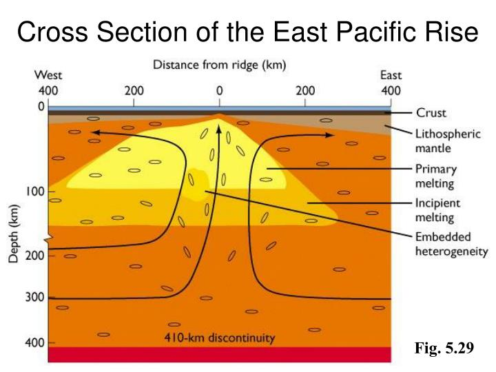 Cross Section of the East Pacific Rise