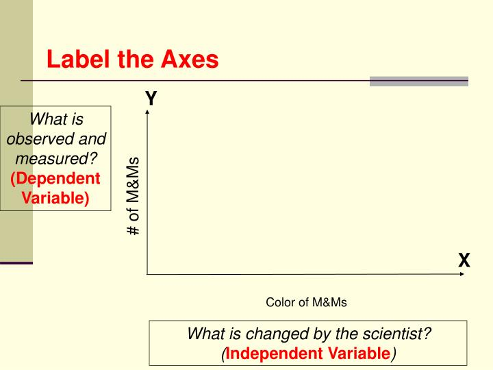 Label the Axes