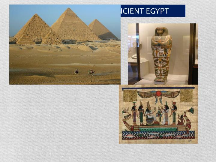 THE EXPERTS ON ANCIENT EGYPT