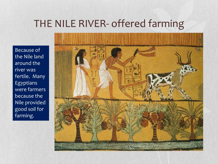 THE NILE RIVER- offered farming