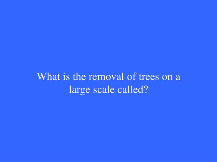 What is the removal of trees on a large scale called?