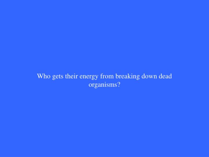 Who gets their energy from breaking down dead organisms?