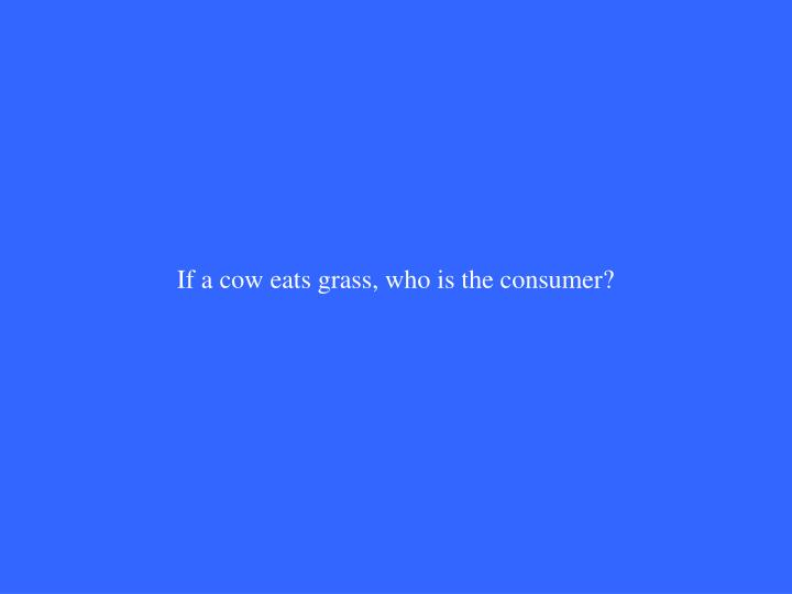 If a cow eats grass, who is the consumer?