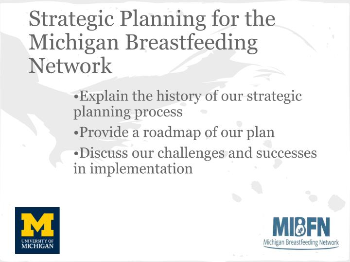 Strategic Planning for the Michigan Breastfeeding Network