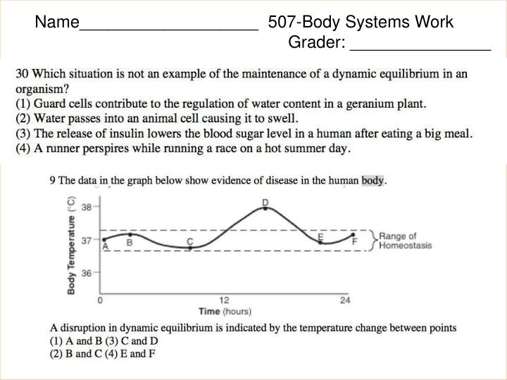 Name___________________  507-Body Systems Work