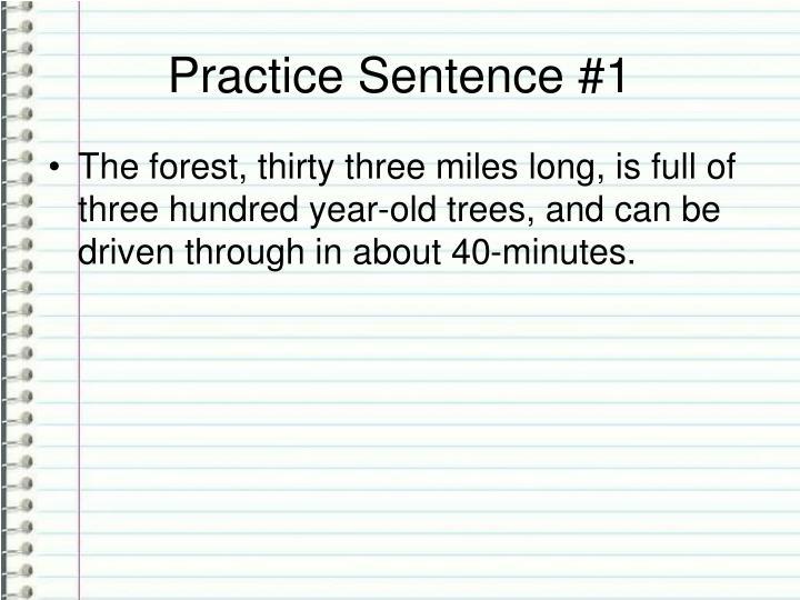 Practice Sentence #1