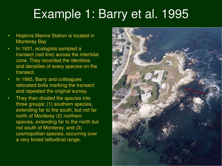 Example 1 barry et al 1995