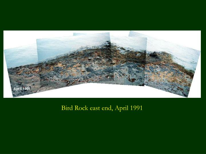Bird Rock east end, April 1991