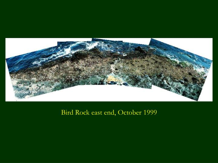 Bird Rock east end, October 1999