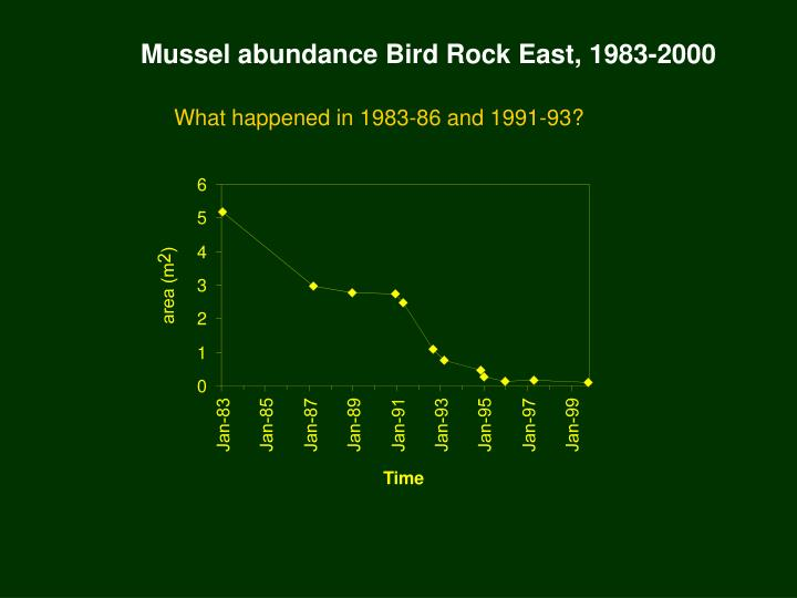 Mussel abundance Bird Rock East, 1983-2000