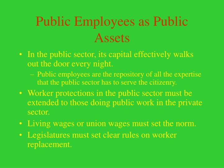 Public Employees as Public Assets
